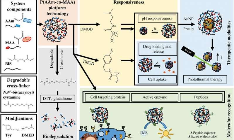 https://nfusion-tech.com/wp-content/uploads/2019/10/novel-nanogels-hold-promise-for-improved-drug-delivery-tocancer-patients_5d99a21b79330.jpeg