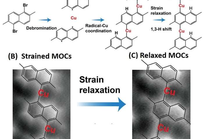 https://nfusion-tech.com/wp-content/uploads/2019/11/strain-induced-isomerization-of-molecular-chains_5dc5736918026.jpeg