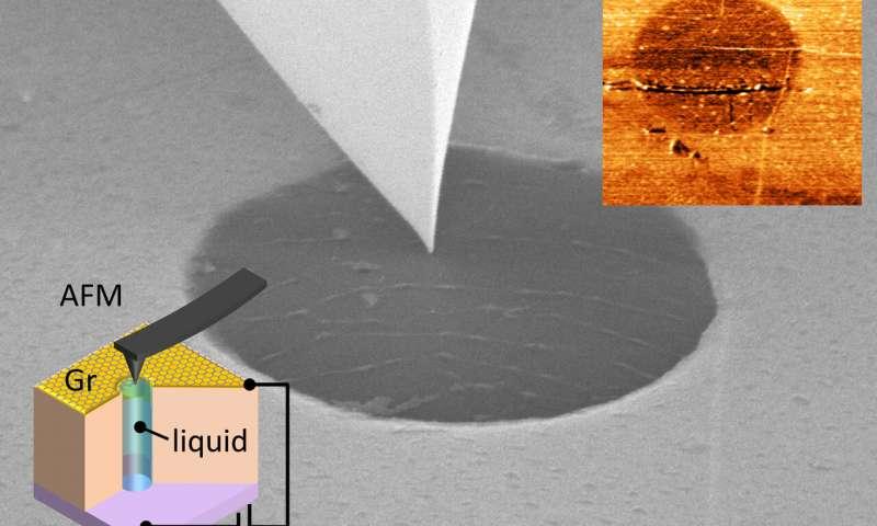 https://nfusion-tech.com/wp-content/uploads/2020/03/living-cells-and-batteries-a-little-graphene-goes-a-longway_5e676e6cbd79a.jpeg