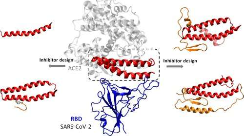 https://nfusion-tech.com/wp-content/uploads/2020/04/designing-peptide-inhibitors-for-possible-covid-19treatments_5e9966615c071.jpeg