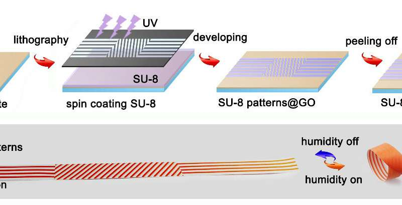 https://nfusion-tech.com/wp-content/uploads/2020/04/graphene-based-actuator-swarm-enables-programmabledeformation_5e85b85630919.jpeg