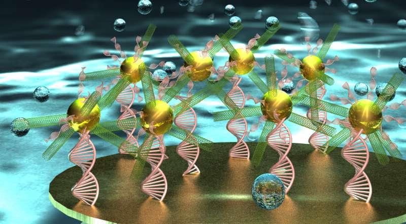 https://nfusion-tech.com/wp-content/uploads/2020/04/researchers-create-unique-dna-biosensor-for-early-stagedisease-detection_5e8eecb3b5dfe.jpeg