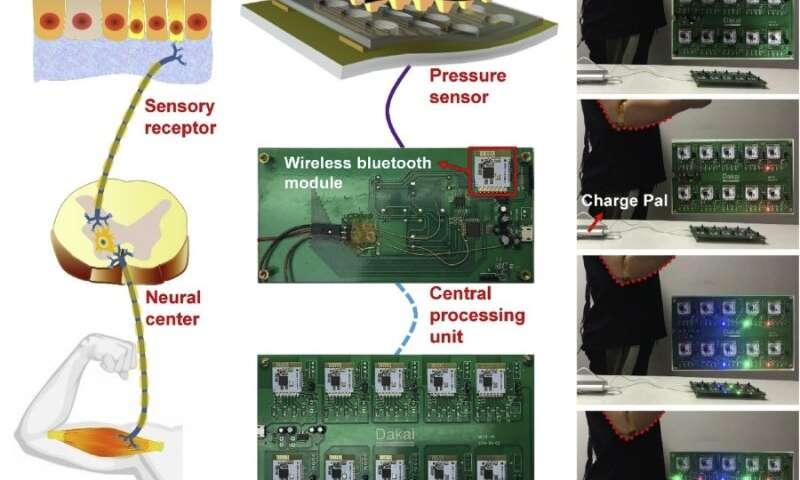 https://nfusion-tech.com/wp-content/uploads/2020/04/researchers-propose-flexible-pressure-sensor-forhuman-machine-interaction_5ea7e78d6fc99.jpeg