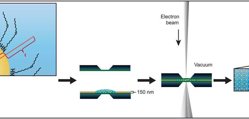 https://nfusion-tech.com/wp-content/uploads/2020/05/electron-microscopy-of-nanoparticle-superlattice-formationat-a-solid-liquid-interface-in-non-polar-liquids_5ece214f4e0b3.jpeg