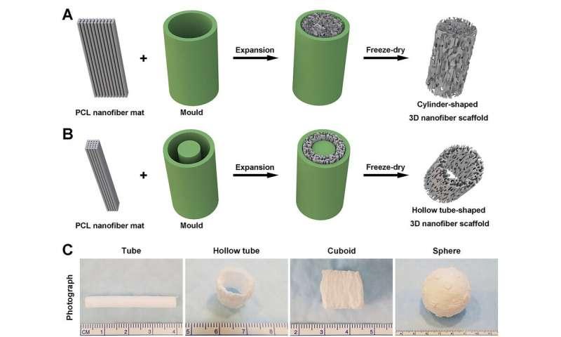 https://nfusion-tech.com/wp-content/uploads/2020/05/nanofiber-membranes-transformed-into-3-d-scaffolds_5ebbb8db2742a.jpeg
