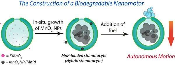https://nfusion-tech.com/wp-content/uploads/2020/06/new-hybrid-engine-for-biodegradable-nanomotors-thattransport-drugs-to-diseased-tissue_5ef5add791ad5.jpeg