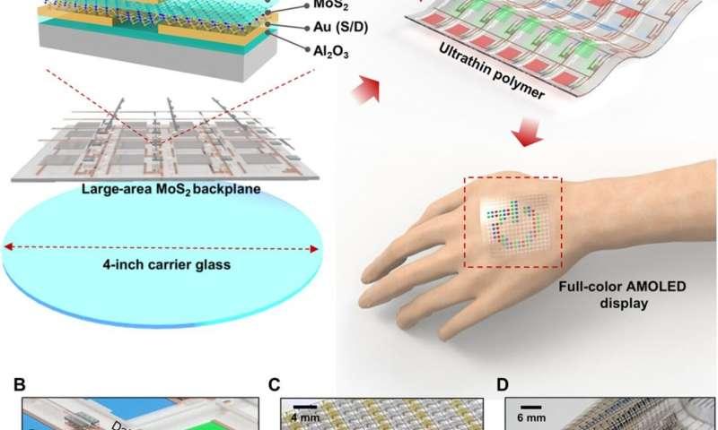 https://nfusion-tech.com/wp-content/uploads/2020/07/active-matrix-organic-light-emitting-diode-display-on-humanskin_5f1823c584b8e.jpeg