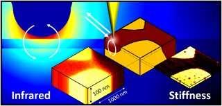 https://nfusion-tech.com/wp-content/uploads/2020/07/researchers-explore-new-depths-in-infrarednanospectroscopy_5f1ac3120081d.jpeg