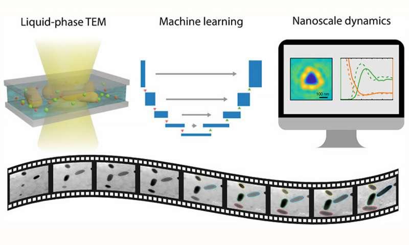 https://nfusion-tech.com/wp-content/uploads/2020/08/machine-learning-peeks-into-nano-aquariums_5f44cf2676437.jpeg