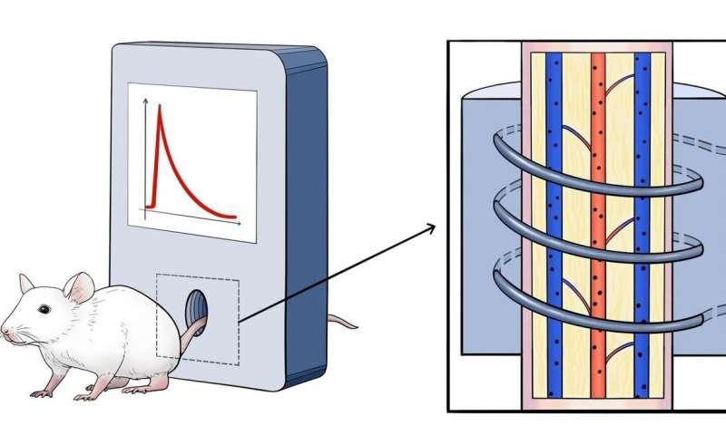 https://nfusion-tech.com/wp-content/uploads/2020/08/researchers-describe-nanoparticles-behavior-in-vivo_5f2a6f8554fe1.jpeg