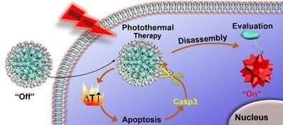 https://nfusion-tech.com/wp-content/uploads/2020/08/researchers-propose-strategy-to-evaluate-tumor-photothermaltherapy-in-real-time_5f2d10c63c5cf.jpeg