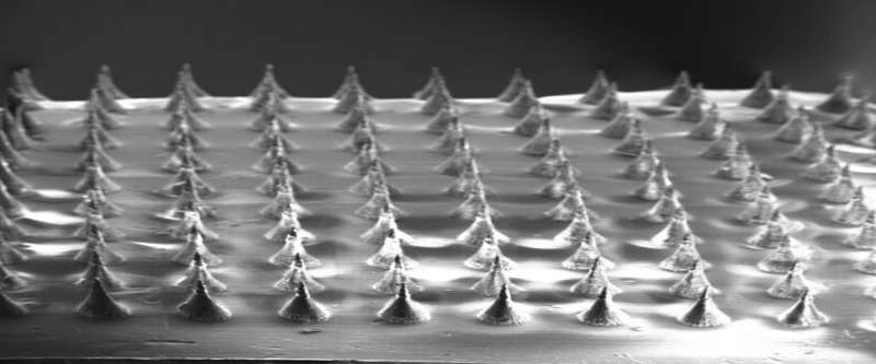https://nfusion-tech.com/wp-content/uploads/2020/10/microneedles-for-therapeutic-gene-delivery_5f7ee249c86a2.jpeg