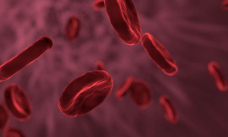 https://nfusion-tech.com/wp-content/uploads/2020/11/faster-diagnostics-thanks-to-nanopore-sequencing_5faa637536a4e.jpeg