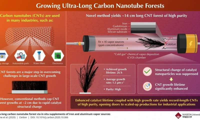 https://nfusion-tech.com/wp-content/uploads/2020/11/scientists-grow-carbon-nanotube-forest-much-longer-than-anyother_5fa3cc02bda4f.jpeg