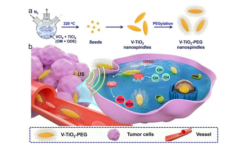 https://nfusion-tech.com/wp-content/uploads/2020/12/tiny-nanospindles-enhance-use-of-ultrasound-to-fightcancer_5fd0a6f30d744.jpeg