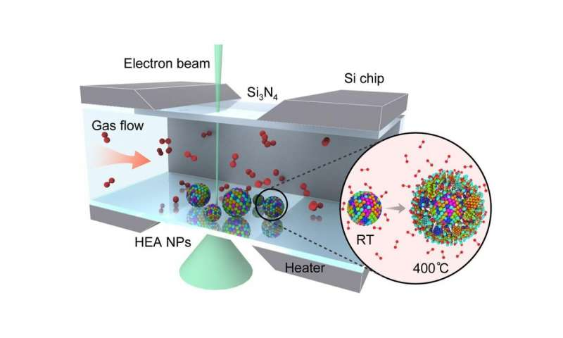 https://nfusion-tech.com/wp-content/uploads/2021/01/better-together-scientists-discover-applications-ofnanoparticles-with-multiple-elements_5ff436c91927b.jpeg