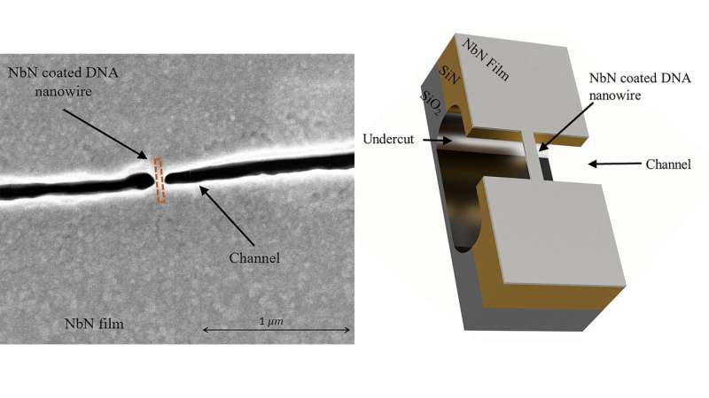 https://nfusion-tech.com/wp-content/uploads/2021/01/dna-origami-enables-fabricating-superconductingnanowires_6007fdb461322.jpeg