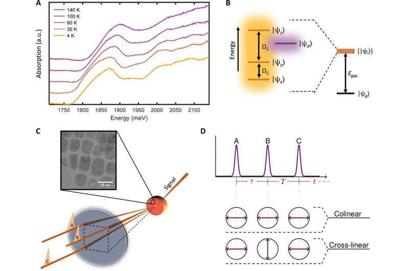 https://nfusion-tech.com/wp-content/uploads/2021/01/multidimensional-coherent-spectroscopy-reveals-triplet-statecoherences-in-cesium-lead-halide-perovskite-nanocrystals_6007fdd45deb7.jpeg