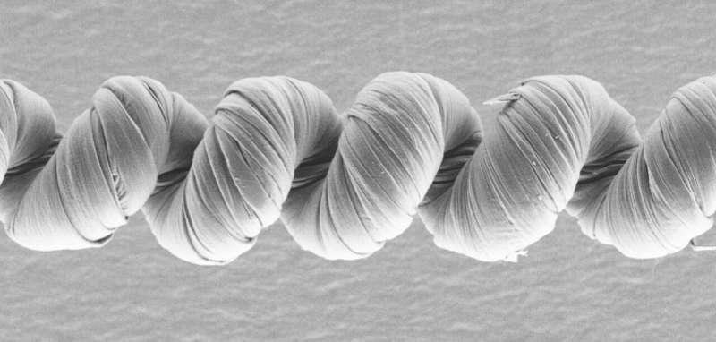 https://nfusion-tech.com/wp-content/uploads/2021/01/researchers-create-powerful-unipolar-carbon-nanotubemuscles_6013dbea95942.jpeg