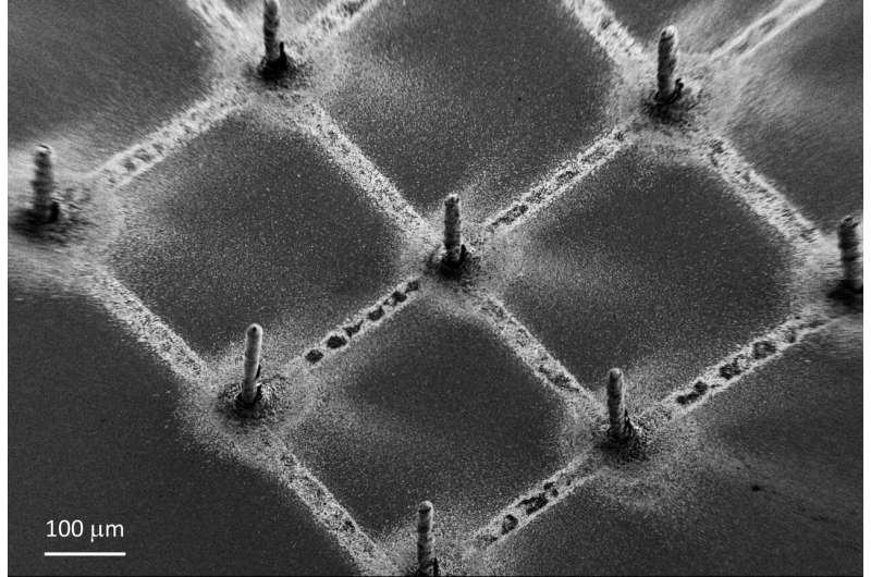 https://nfusion-tech.com/wp-content/uploads/2021/02/3-d-printing-perovskites-on-graphene-makes-next-gen-x-raydetectors_602e3892af29f.jpeg