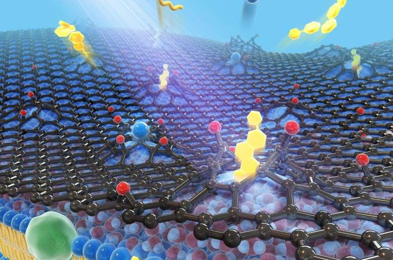 https://nfusion-tech.com/wp-content/uploads/2021/02/capturing-the-contours-of-live-cells-with-novel-nanoimagingtechnique-using-graphene_602e389b94e21.jpeg