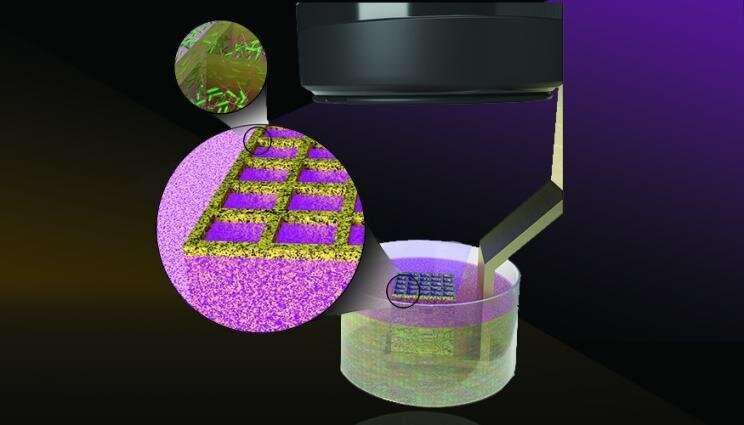 https://nfusion-tech.com/wp-content/uploads/2021/02/lab-3-d-prints-microbes-to-enhance-biomaterials_601d15d585cca.jpeg