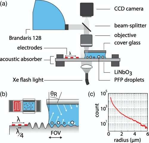 https://nfusion-tech.com/wp-content/uploads/2021/02/vibrating-nanodroplets-may-invade-a-tumor_601d15cb33745.jpeg