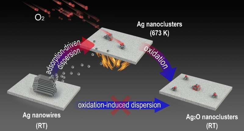https://nfusion-tech.com/wp-content/uploads/2021/03/metallic-state-of-ag-nanoclusters-in-oxidative-dispersionidentified-in-situ_6042000455197.jpeg