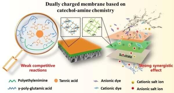 https://nfusion-tech.com/wp-content/uploads/2021/03/researchers-develop-nanofiltration-membrane-for-highlyefficient-dye-salt-separation_6059b9d3051a6.jpeg