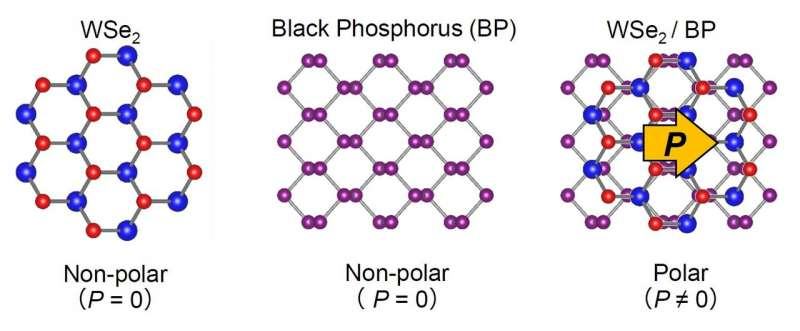 https://nfusion-tech.com/wp-content/uploads/2021/04/2d-materials-combine-becoming-polarized-and-giving-rise-tophotovoltaic-effect_6066e8b20d4a2.jpeg