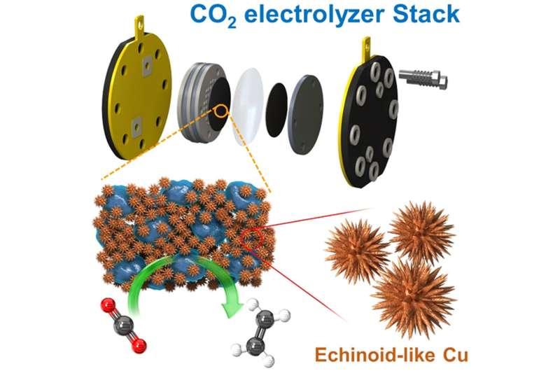 https://nfusion-tech.com/wp-content/uploads/2021/04/developing-a-large-carbon-dioxide-conversion-system-a-corecarbon-neutrality-technology_606ed1a8c4569.jpeg