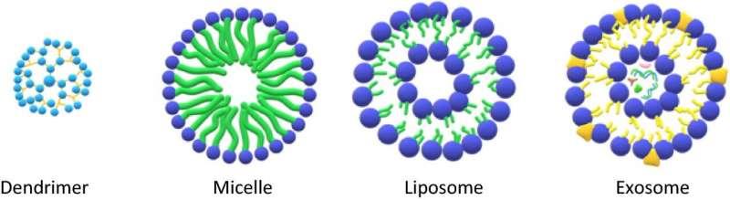 https://nfusion-tech.com/wp-content/uploads/2021/04/nanoconfinement-concept-improves-safety-of-diagnosticcontrast-agent_606ed19fd688f.jpeg