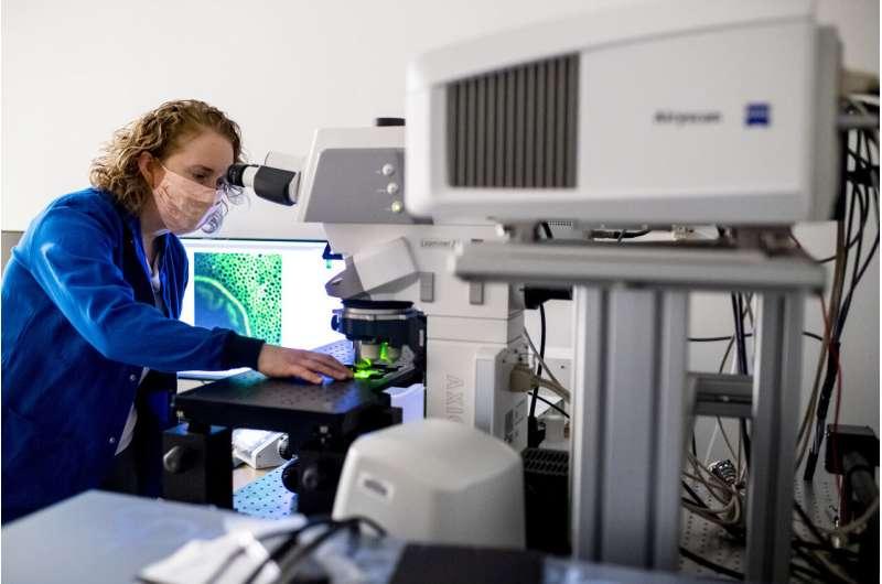 https://nfusion-tech.com/wp-content/uploads/2021/04/new-nanosensor-holds-promise-for-diagnosing-treatingneurological-disease_6076ba8557e7e.jpeg