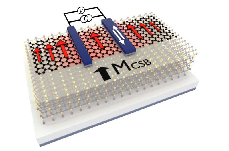 https://nfusion-tech.com/wp-content/uploads/2021/05/toward-2d-memory-technology-by-magnetic-graphene_60950e63693fb.jpeg