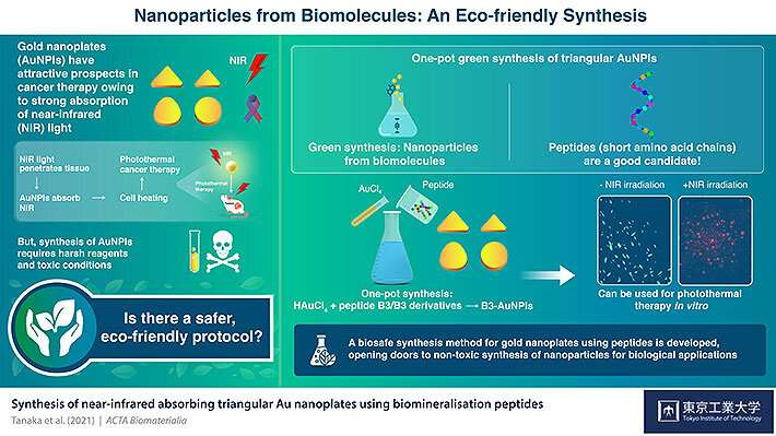 https://nfusion-tech.com/wp-content/uploads/2021/06/synthesizing-green-gold-nanoparticles-for-cancer-therapywith-biomolecules_60daf0df7335e.jpeg