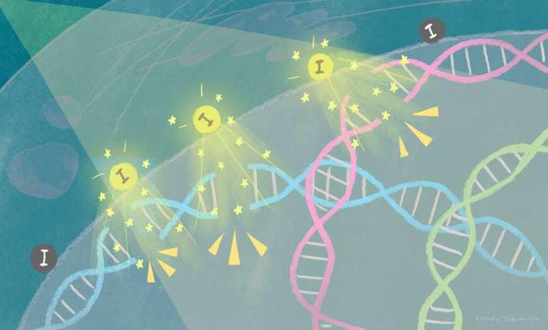 https://nfusion-tech.com/wp-content/uploads/2021/07/quantum-physics-helps-destroy-cancer-cells_60f004ee1d393.jpeg