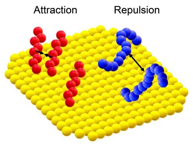 https://nfusion-tech.com/wp-content/uploads/2021/07/small-molecule-plays-outsize-role-in-controllingnanoparticle_60f004a70d768.jpeg