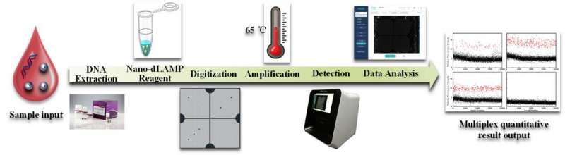 https://nfusion-tech.com/wp-content/uploads/2021/08/chip-based-digital-pcr-detection-technology-and-instrumentdeveloped_6120cc49c418f.jpeg