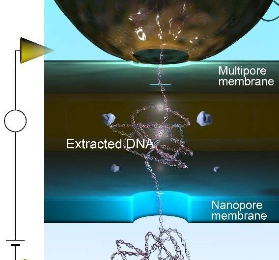 https://nfusion-tech.com/wp-content/uploads/2021/08/in-situ-extraction-and-detection-of-dna-usingnanopores_6126127017a90.jpeg
