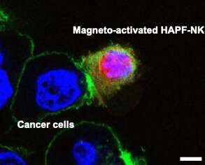 https://nfusion-tech.com/wp-content/uploads/2021/08/nanoparticles-could-boost-cancer-immunotherapy_610a62c6e5060.jpeg
