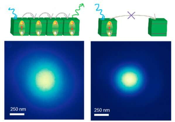 https://nfusion-tech.com/wp-content/uploads/2021/08/seeing-is-believing-direct-imaging-of-record-excitondiffusion-length_612763a9bce9f.jpeg