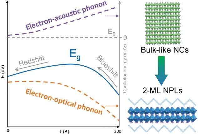 https://nfusion-tech.com/wp-content/uploads/2021/08/unusual-bandgap-renormalization-in-2d-inorganic-lead-halideperovskite-nanoplatelets_612dfb0352b43.jpeg