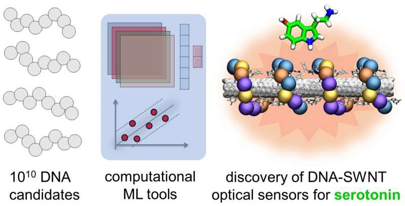 https://nfusion-tech.com/wp-content/uploads/2021/09/atomistic-simulations-and-ai-based-findings-shed-light-onnanoscale-therapeutics-and-new-brain-sensors_61309e9fe793a.jpeg