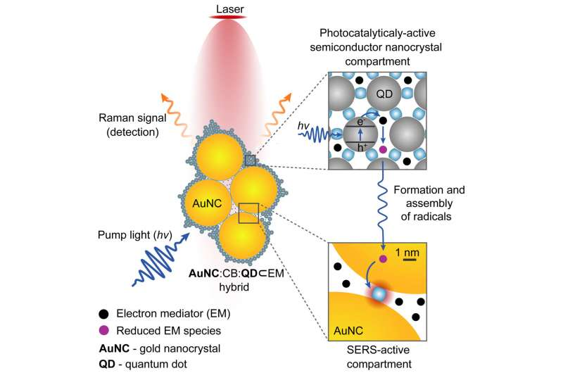 https://nfusion-tech.com/wp-content/uploads/2021/09/nano-camera-made-using-molecular-glue-allows-real-timemonitoring-of-chemical-reactions_6131ef82f3070.jpeg